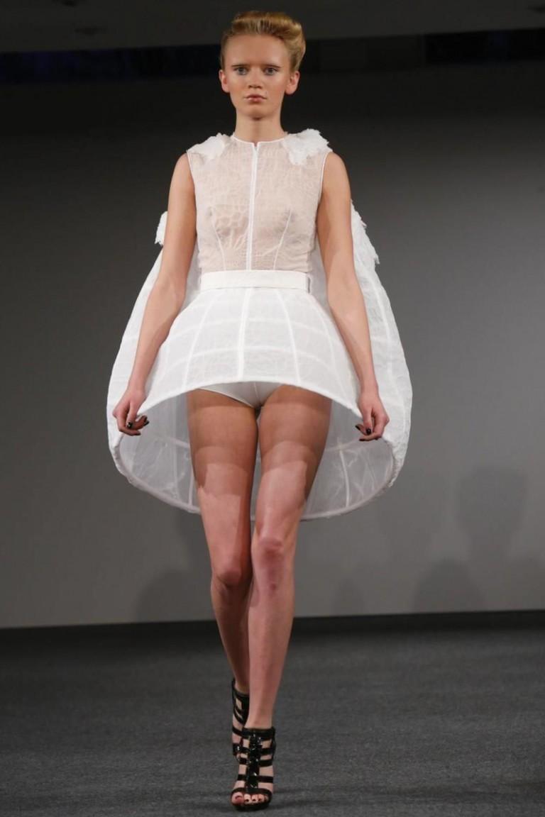 Clarisse Hieraix, Couture, Spring Summer, 2014, Paris